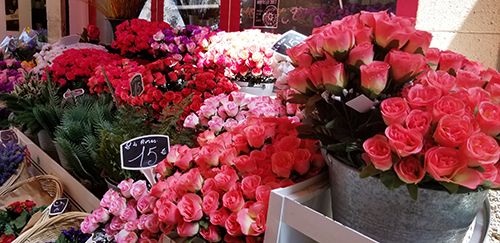 Nice, France - Flower Market (Old Town)